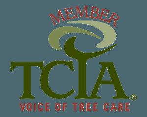 TCIA Member